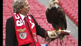 Águia do Benfica